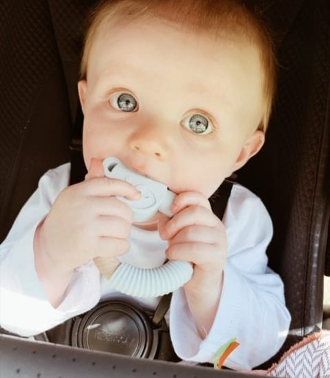 6ef186e9b8a0d Nibbling Teething Accessories | Nibbling Baby Accessories